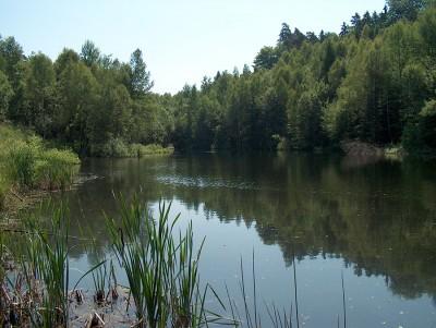 jezioro_ciche_fot_r_tomaszewski